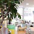 Cafe_lrb49