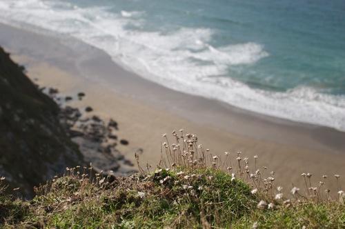 Cornwall_october_30_img_4148