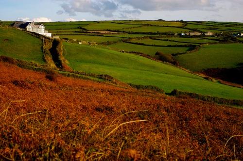 Cornwall_october_8_img_4303